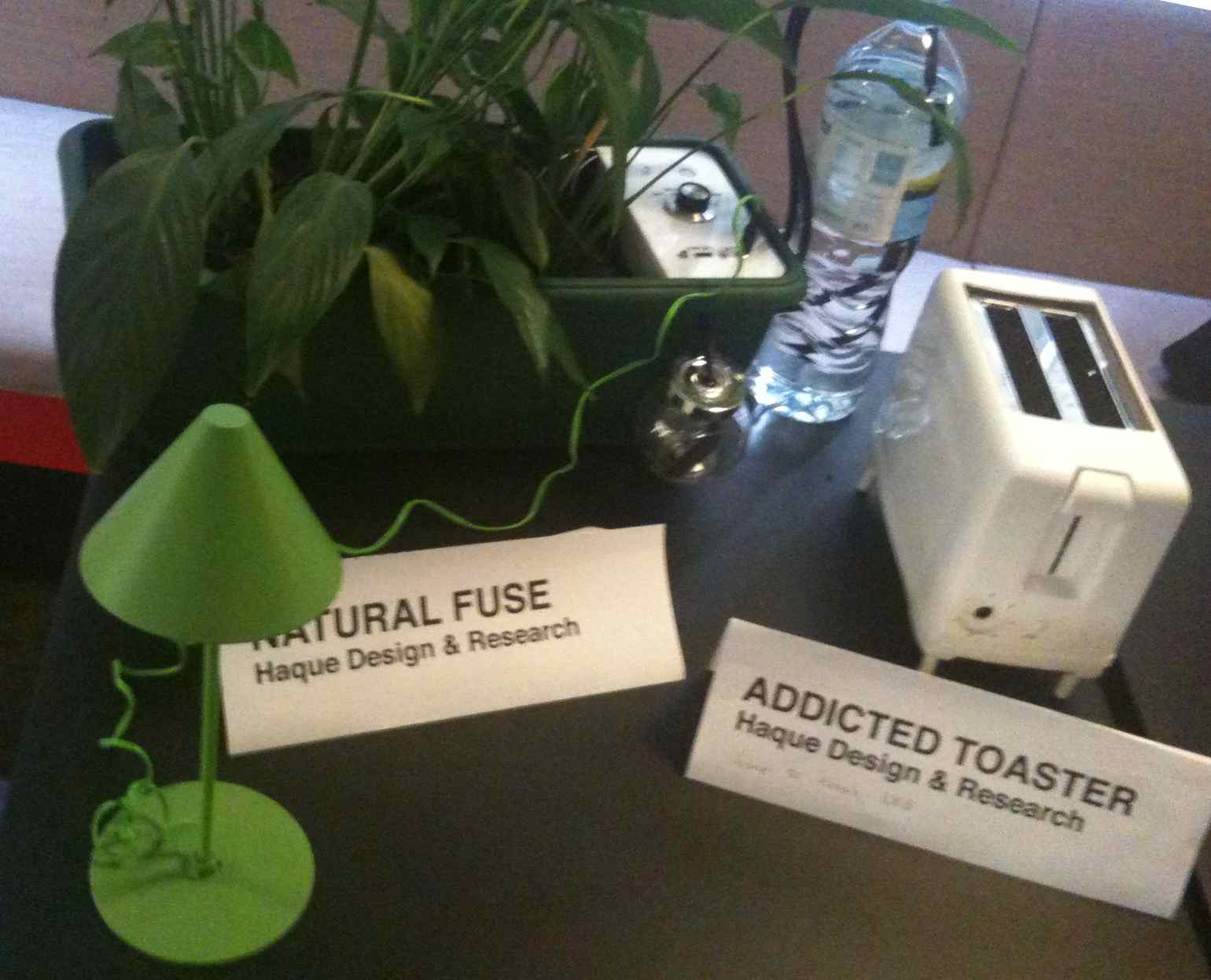 Natural Fuse & Addicted Toaster